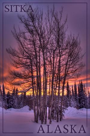 https://imgc.artprintimages.com/img/print/sitka-alaska-tree-in-snow_u-l-q1gqhy10.jpg?p=0
