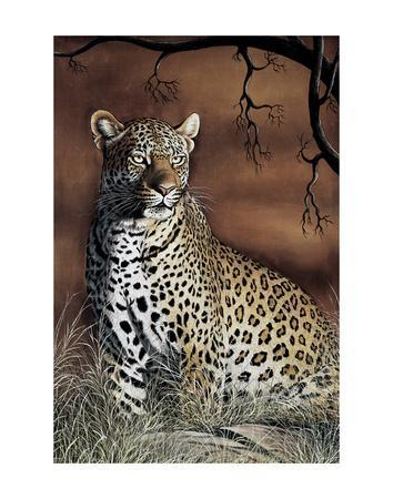 Sitting Leopard-Rajendra Singh-Art Print