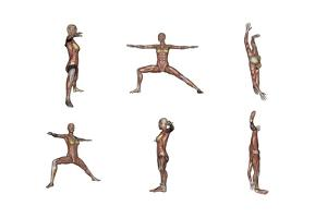 Six Different Views of Warrior Yoga Pose Showing Female Musculature