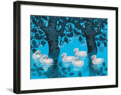 Six Swimming Swans--Framed Giclee Print