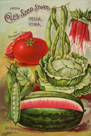 Six Varieties from Cole's Seed Store, Pella, Iowa--Art Print