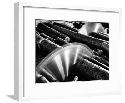 Sixteen-Foot Logs Being Cut in Slasher Mill in Preparation for Next Stage at Paper Mill-Margaret Bourke-White-Framed Premium Photographic Print