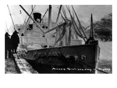 Skagway, Alaska - Princess Norah Ship Arriving-Lantern Press-Art Print