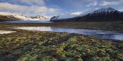 Skardatindur, Moss Cushion, Skaftafellsjškull, Skaftafell, South Iceland, Iceland-Rainer Mirau-Photographic Print