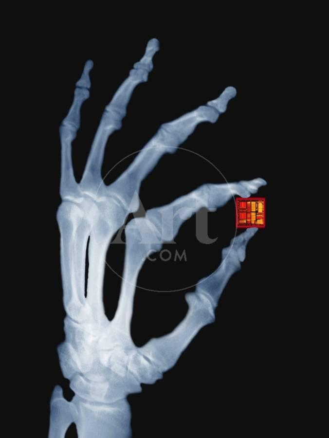 Skeletal Hand Holding Computer Chip Photographic Print By Charles O