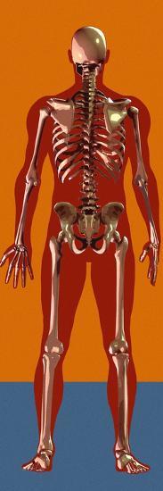 Skeleton, Artwork-Mehau Kulyk-Photographic Print