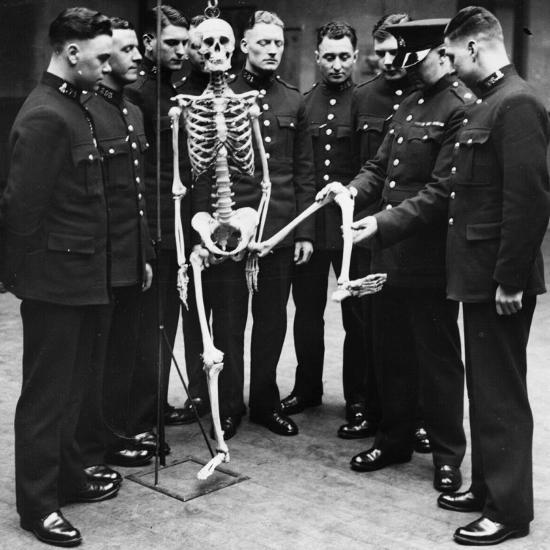 Skeleton Force--Photographic Print