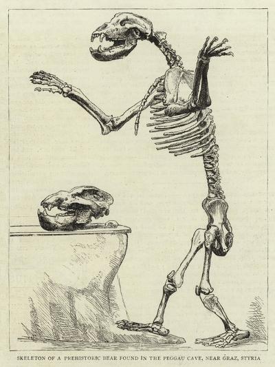 Skeleton of a Prehistoric Bear Found in the Peggau Cave, Near Graz, Styria--Giclee Print