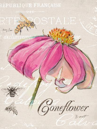 Sketchbook Coneflower-Chad Barrett-Art Print