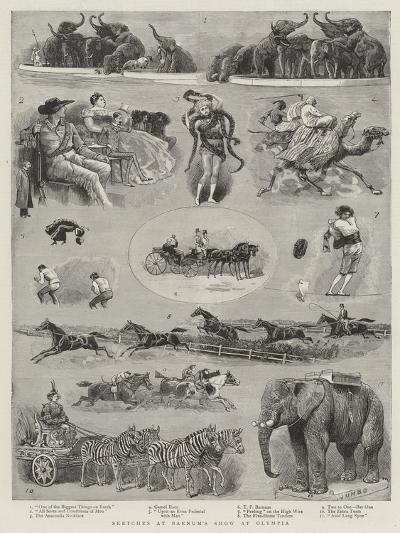 Sketches at Barnum's Show at Olympia--Giclee Print