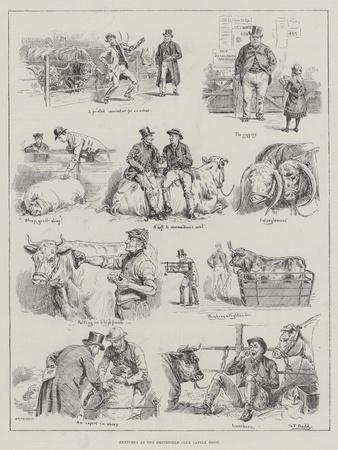 https://imgc.artprintimages.com/img/print/sketches-at-the-smithfield-club-cattle-show_u-l-pusd2c0.jpg?p=0