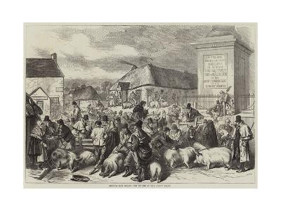Sketches from Ireland, the Pig Fair at Trim, County Meath--Giclee Print