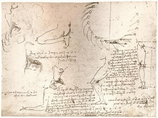 Sketches illustrating the theory of the proportions of the human figure, c1472-c1519 (1883)-Leonardo da Vinci-Giclee Print