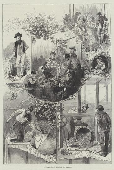 Sketches in an English Hop Garden--Giclee Print