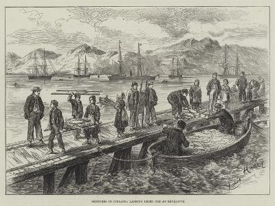 Sketches in Iceland, Landing Dried Cod at Reykjavik-L. Huard-Giclee Print