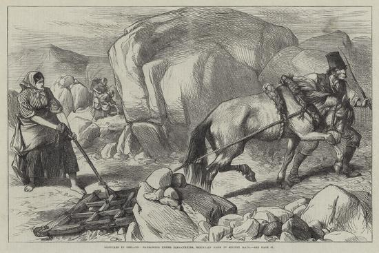 Sketches in Ireland, Harrowing under Difficulties, Mountain Farm in County Mayo--Giclee Print
