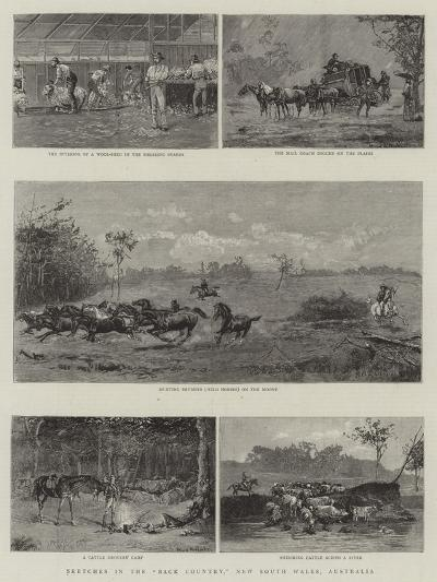 Sketches in the Back Country, New South Wales, Australia--Giclee Print