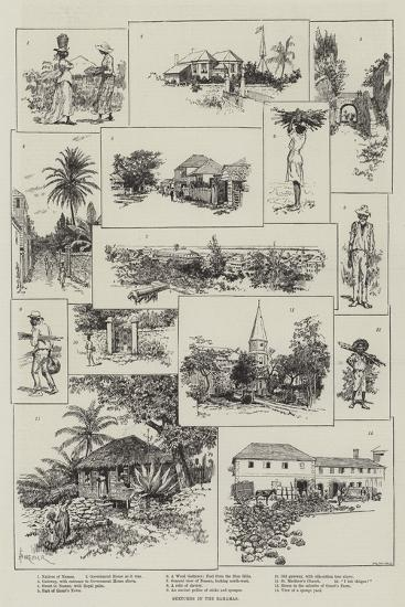 Sketches in the Bahamas-Amedee Forestier-Giclee Print