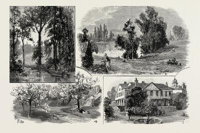Sketches in Waterlow Park--Giclee Print