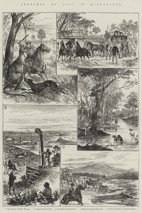 Sketches of Life in Queensland