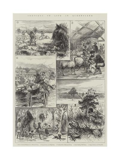 Sketches of Life in Queensland--Giclee Print