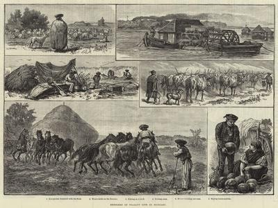 Sketches of Peasant Life in Hungary--Giclee Print