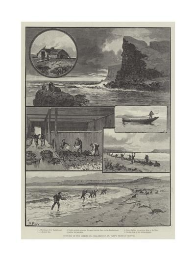 Sketches of the Behring Sea Seal-Fishery, St Paul's, Pribylov Islands--Giclee Print