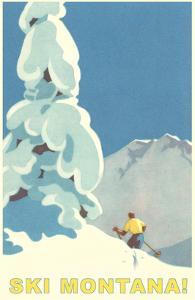 Ski Montana, Snow on Pine Tree