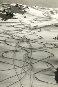 Ski Trails in Snow