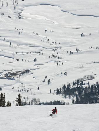 https://imgc.artprintimages.com/img/print/skier-at-jackson-hole-ski-jackson-hole-wyoming-united-states-of-america-north-america_u-l-pfuehg0.jpg?p=0