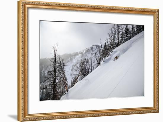 Skier Gets Backlit Powder Deep In The Teton Backcountry After A Massive Winter Storm-Jay Goodrich-Framed Photographic Print