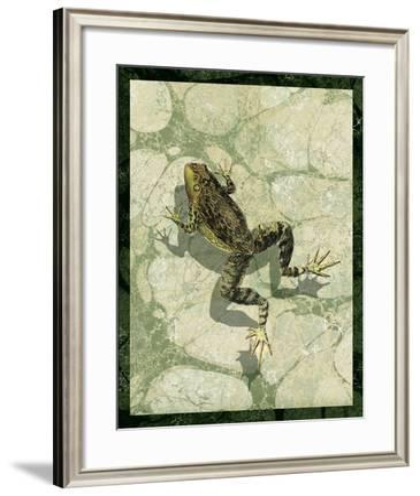 Skinny dippin' II-Vision Studio-Framed Art Print