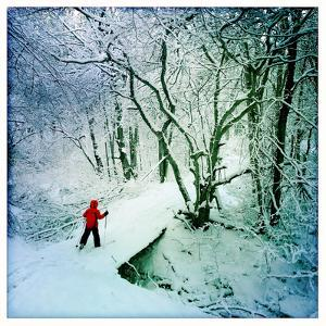 A 9 Year Old Boy Cross Country Skis across a Snow Covered Bridge by Skip Brown
