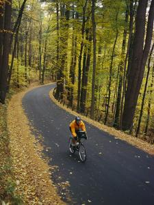 A Cyclist Riding Along a Rural Road in the Fall by Skip Brown