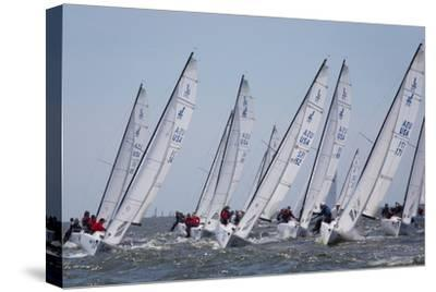 A Fleet of J70 Sailboats During a Race on the Chesapeake Bay Near Annapolis, Maryland