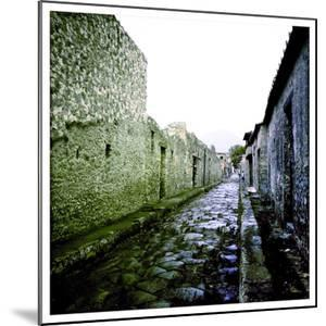 A Street in the Roman Town of Pompeii, Italy by Skip Brown