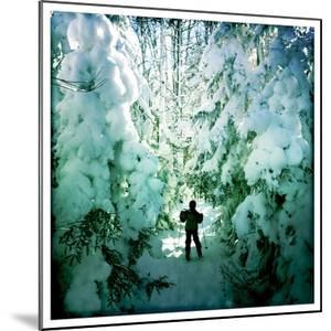 An Eight Year Old Boy Skis Through Snowy Trees by Skip Brown