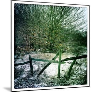An Old Fence and a Dusting of Snow by Skip Brown