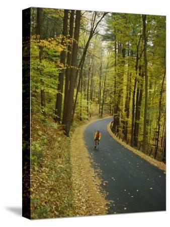 Biker on Road Amidst Fall Foliage