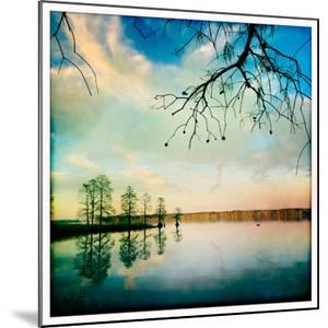 Cypress Trees and Cloud Reflections in the Calm Water of the Chickahominy River by Skip Brown
