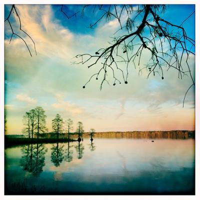 Cypress Trees and Cloud Reflections in the Calm Water of the Chickahominy River