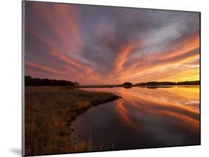 Sunset over a Chesapeake Bay Shoreline by Skip Brown