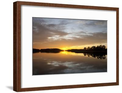 Sunset over a Chesapeake Bay Shoreline