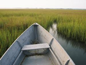 The Bow of a Rowboat Slices Through the Marsh Grass by Skip Brown
