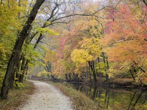 Towpath Along the Chesapeake and Ohio Canal One Autumn Day by Skip Brown