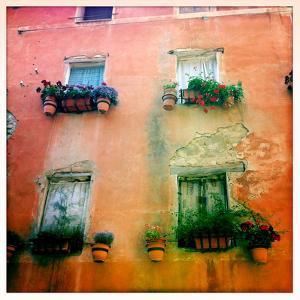 Window Flower Pots on Old Building in Deruta by Skip Brown