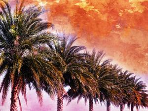 Hifi Palms III by Skip Nall