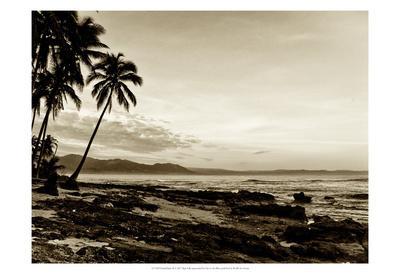 Island Palms II