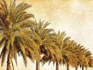 Palms on Brown I by Skip Nall