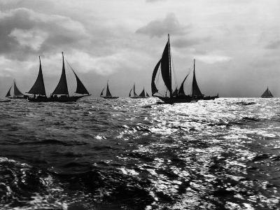 Skipjacks on the Chesapeake Bay Near Sharps Island-A. Aubrey Bodine-Photographic Print